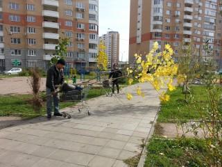 град Московский озеленение
