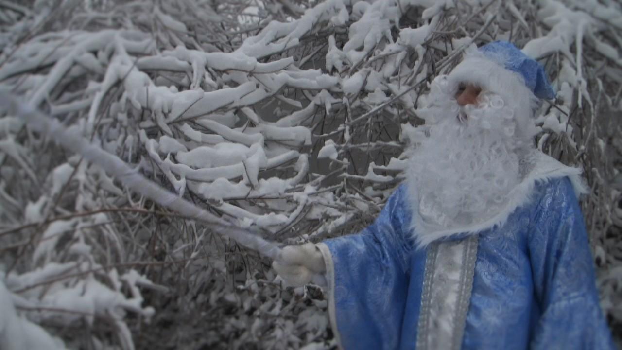 Дед Мороз 2016