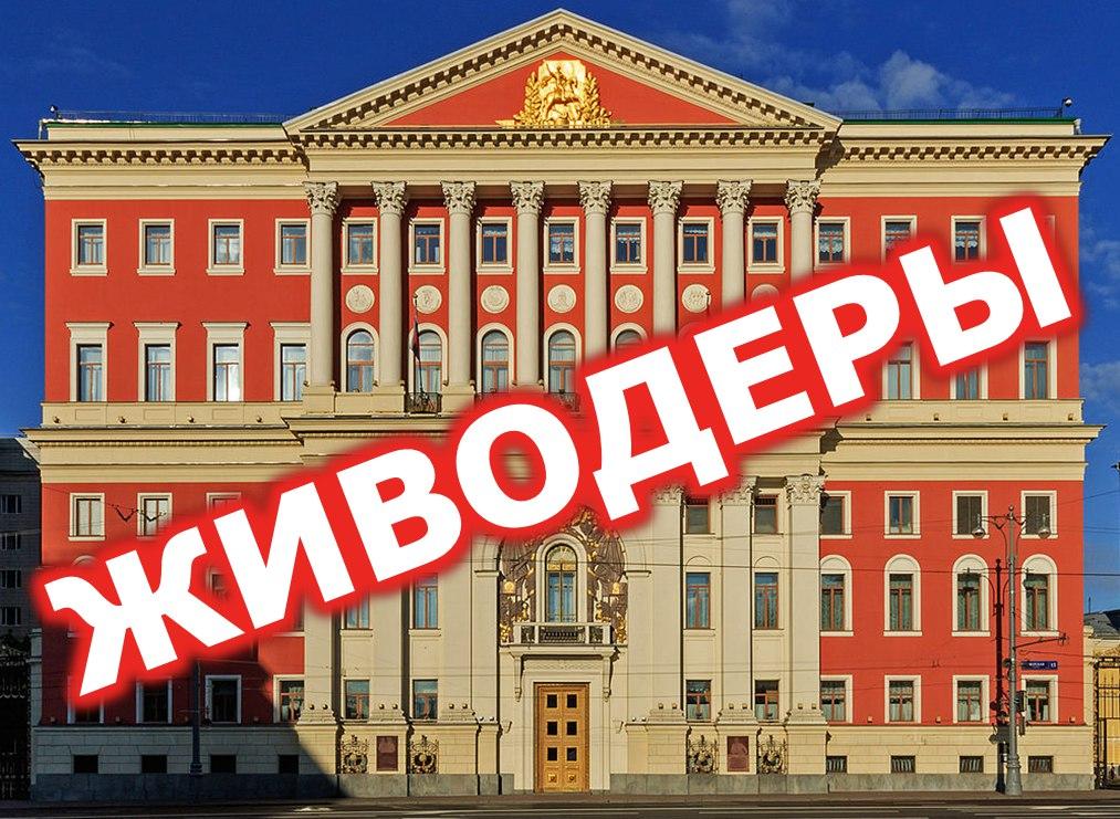 Республика Вешняки заблокирована ВКонтакте за активную позицию